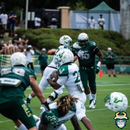 105A - USF RB Johnny Ford Trey Laing Helmet Popped Spring Game 2019 by Matthew Manuri 1386 IG (4016x4016)