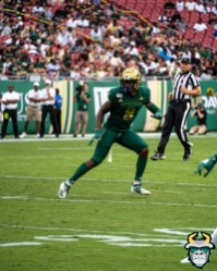 28 - USF vs S.C. State 2019 - Devin Studstill by David Gold - DRG00012