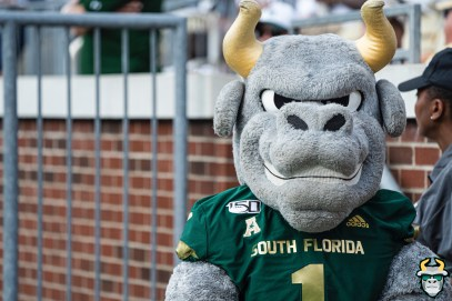 43 - USF vs Georgia Tech 2019 - USF Mascot Rocky D. Bull by David Gold - DRG00612