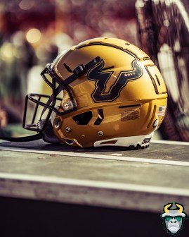 48 - BYU vs. USF 2019 - USF Helmet by David Gold - DRG00423