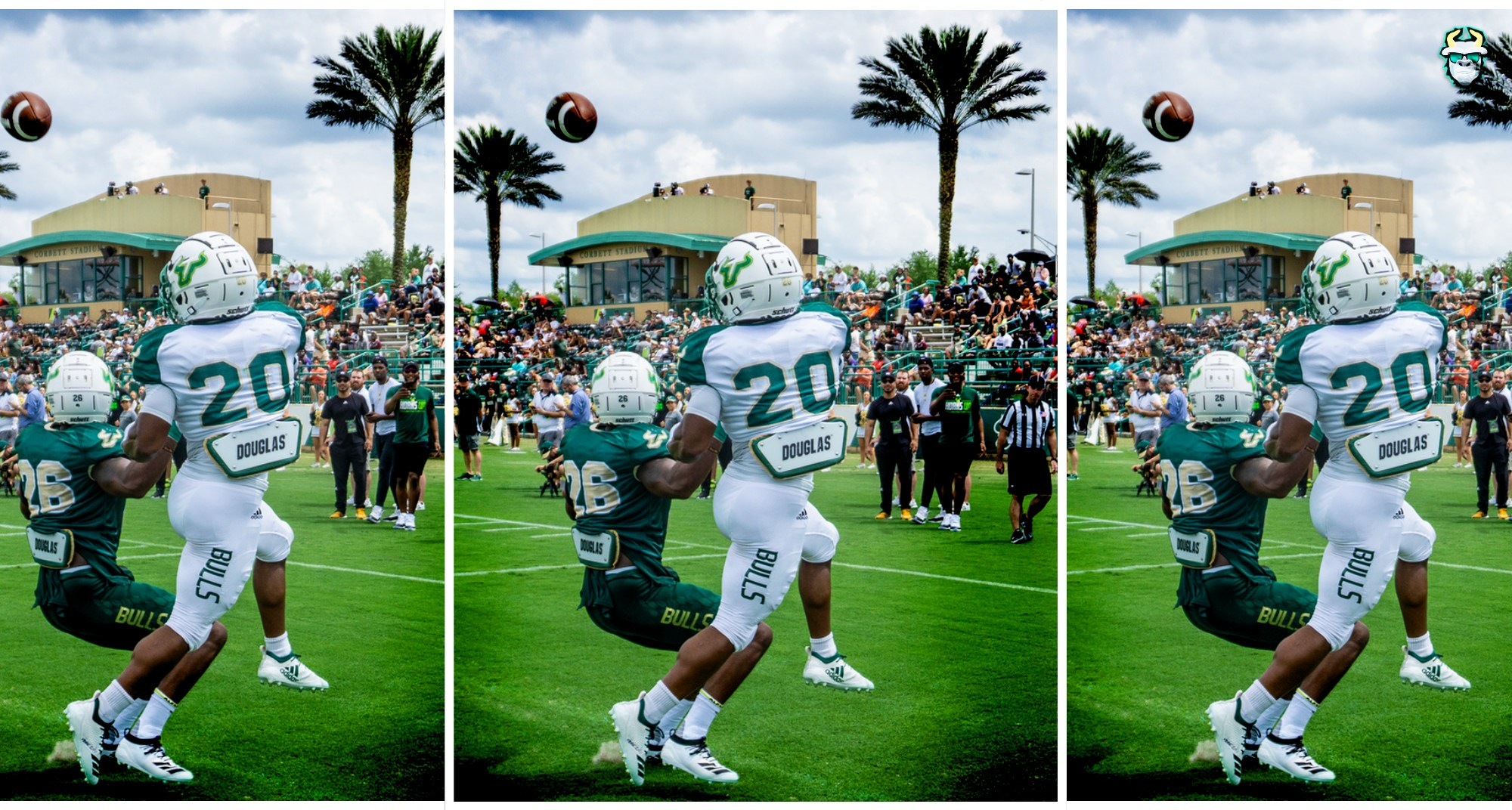 USF RB Johnny Ford during the 2019 Bulls Spring Game
