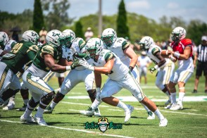 76 - USF Spring Game 2018 - USF TE Mitchell Wilcox by Dennis Akers - SoFloBulls.com (5615x3748)