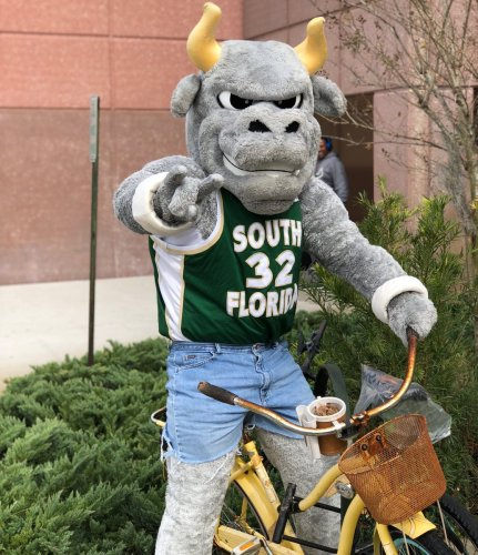 USF Mascot Rocky the Bull in Jorts and Throwback Jersey (1034x1200)