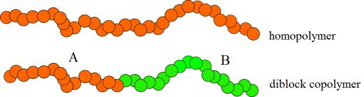 figure 1.homopolymers
