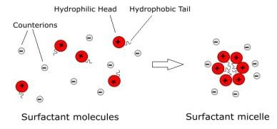 Figure 2 micelles