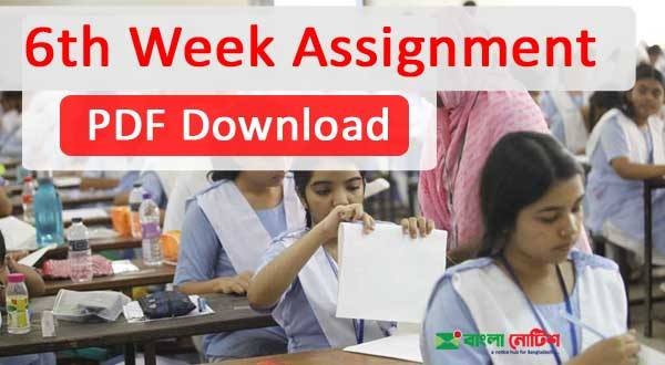 6th Week Assignment For Class 6 to 9 Published PDF Download Now