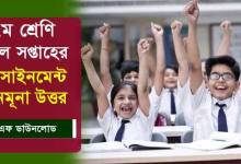 Class 7 All Assignments and Solution PDF Question and Answer 2021