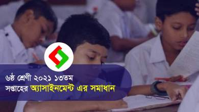 Class 6 Assignment Answer 13th Week PDF File 2021