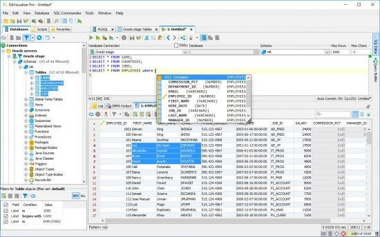 DbVisualizer Pro 12.0.3 Crack 2021 Full Version  Download