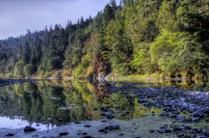 Morning on Eel River