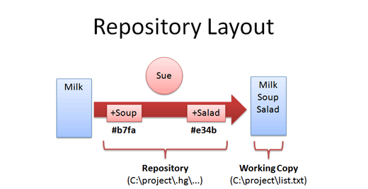 distributed_repo_layout