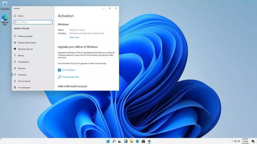 Windows 11 Pro Preactivated Free Download