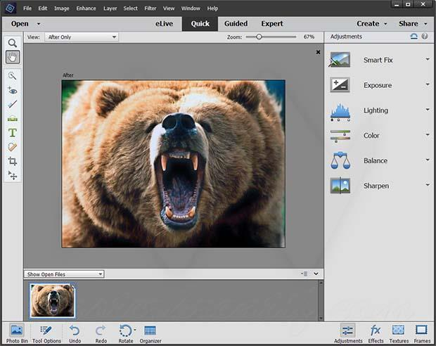 Adobe Photoshop Elements Crack With Serial key