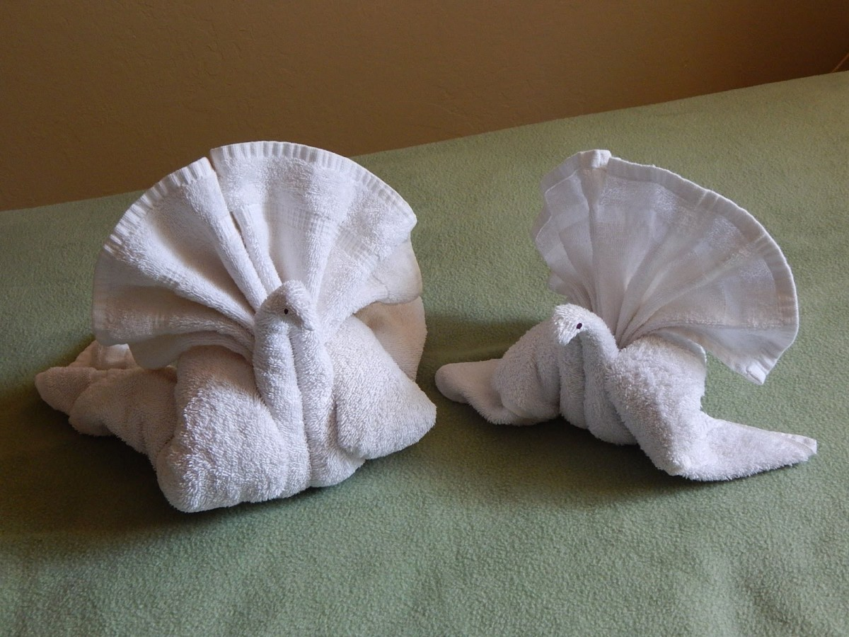 Zen and the Art of Towel Folding