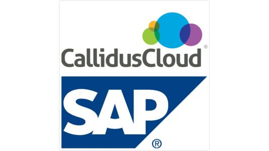 CallidusCloud WorkFlow