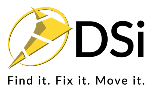 DSi Service Manager