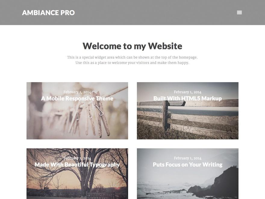 Ambiance Pro Theme WordPress theme