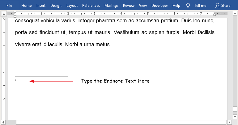 Type to insert the endnote text