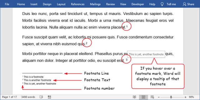 Illustration of endnote in Word