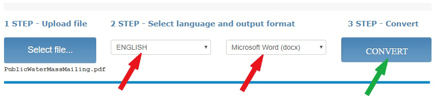 Select the language and file format then hit the Convert button