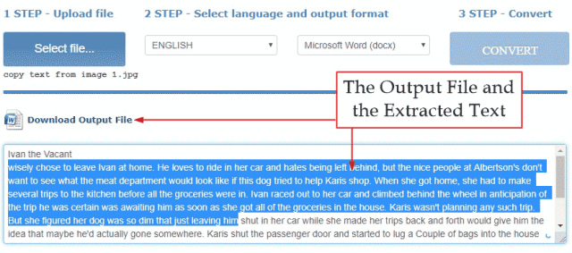 Online tool extracted text from the picture