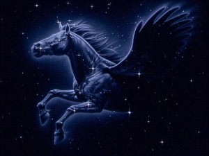 Pegasus Astrology Software Program