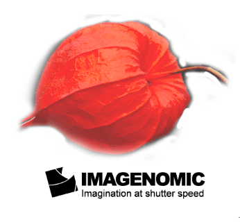 Imagenomic Portraiture 3.5.1 Mac Crack