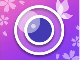 Download YouCam For PC