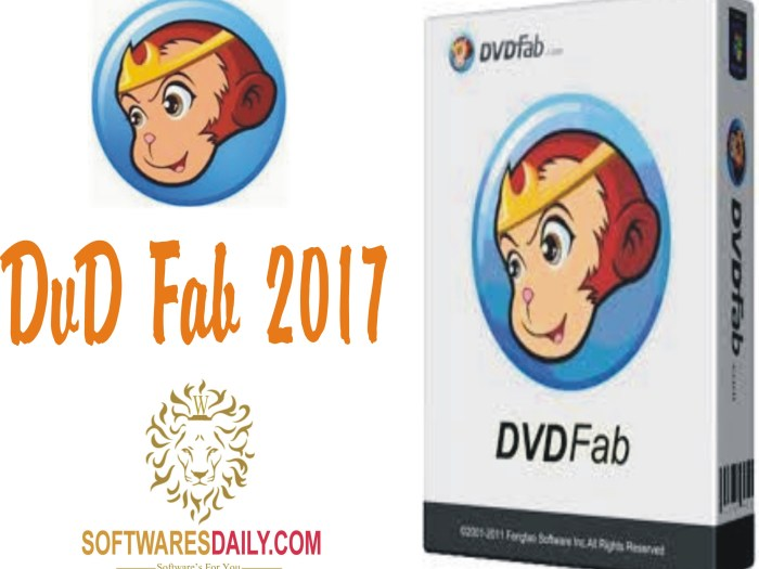 DVDFab 2017 Serial Key & Crack Patch Free Download