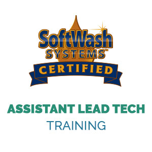 Assistant Lead Tech
