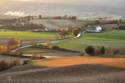 Cod. P01 Paesaggi | San Severino Marche 2011