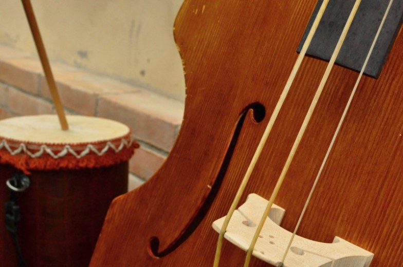 Cod. A15 Violone e Carcavella   Cantamaggio 2011