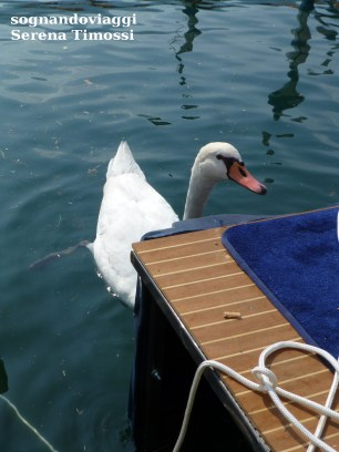 floating-piers-iseo-8