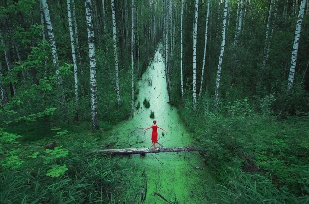 Voci dalle Terre del Sogno V – Eilean dei boschi, un racconto di guarigione