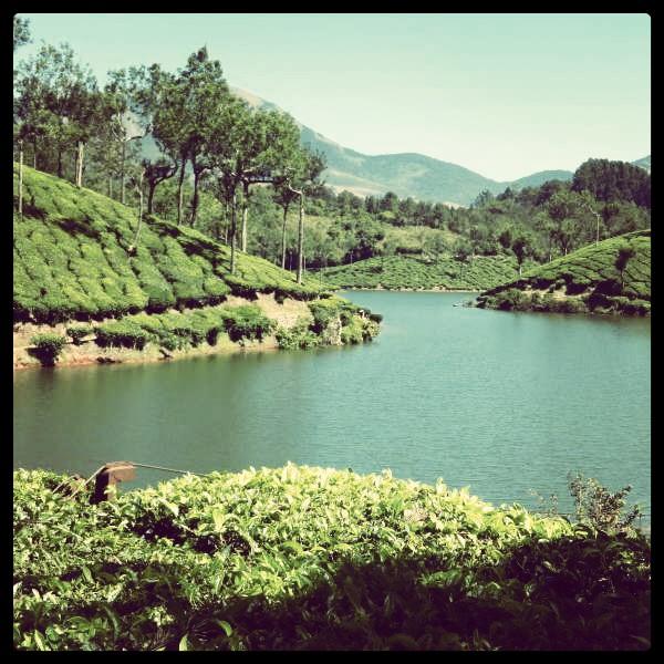 Enchanting Kerala - A Picturesque Journey (3/6)