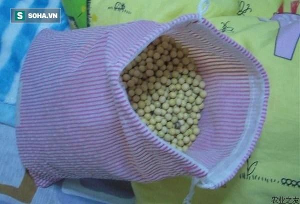 Bác sĩ tiết lộ: Cho một ít hạt đậu nành vào ruột gối, bệnh đau cổ vai gáy sẽ biến mất - Ảnh 3.