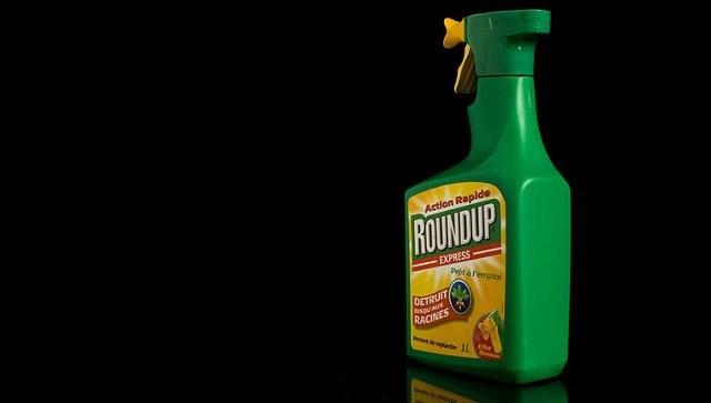 Thuốc diệt cỏ phổ biến Roundup chứa glyphosate bị cấm sử dụng ở Colombia (Ảnh minh họa)