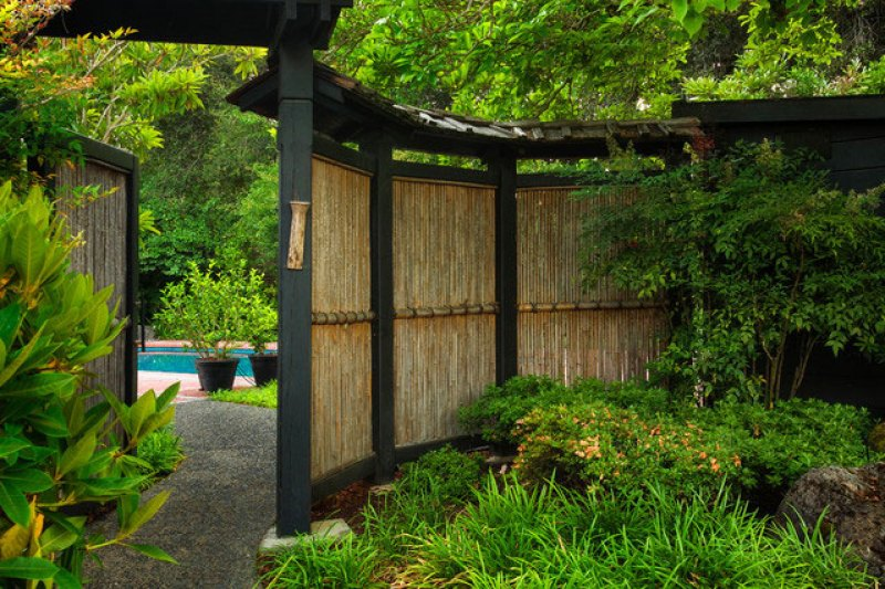 Natural curved bamboo landscape screen