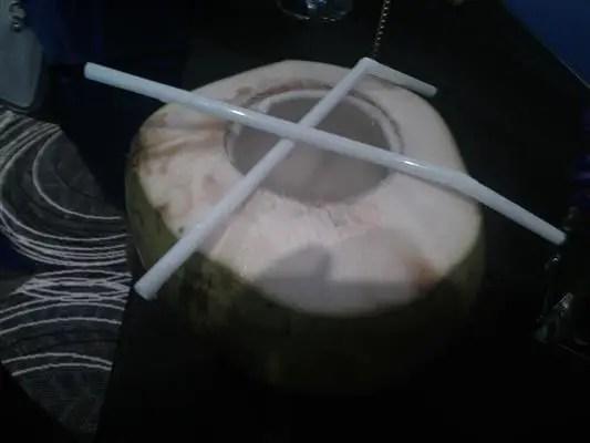 gambar buah kelapa