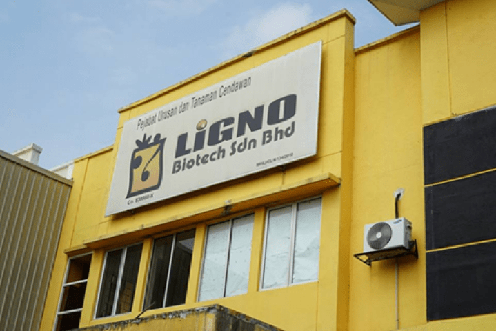 LiGNO Biotech Sdn Bhd, Kilang tempat Cendawan Susu Harimau diternak secara organik