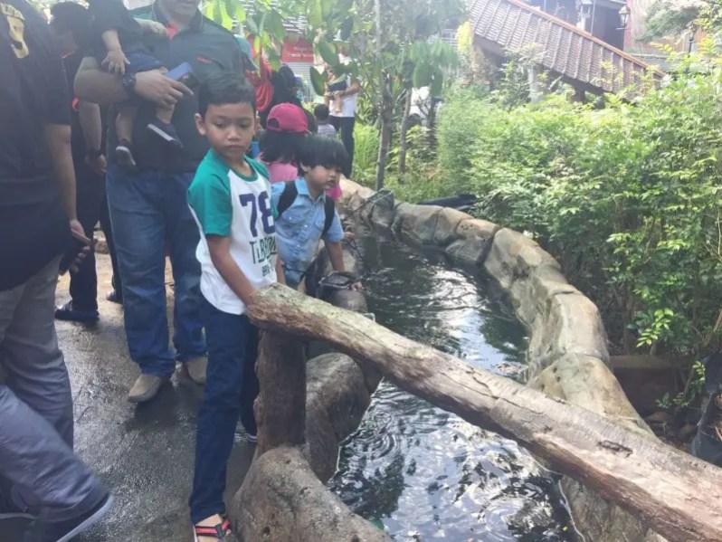 kl-tower-mini-zoo-longkang-fishing