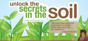 Unlock the secrets in the soil - image