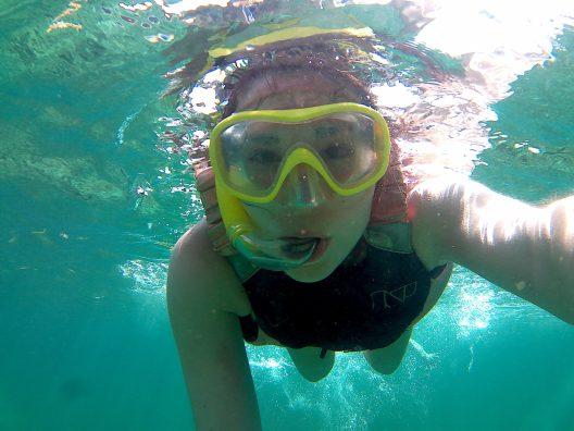 Snorkeling aux Saintes