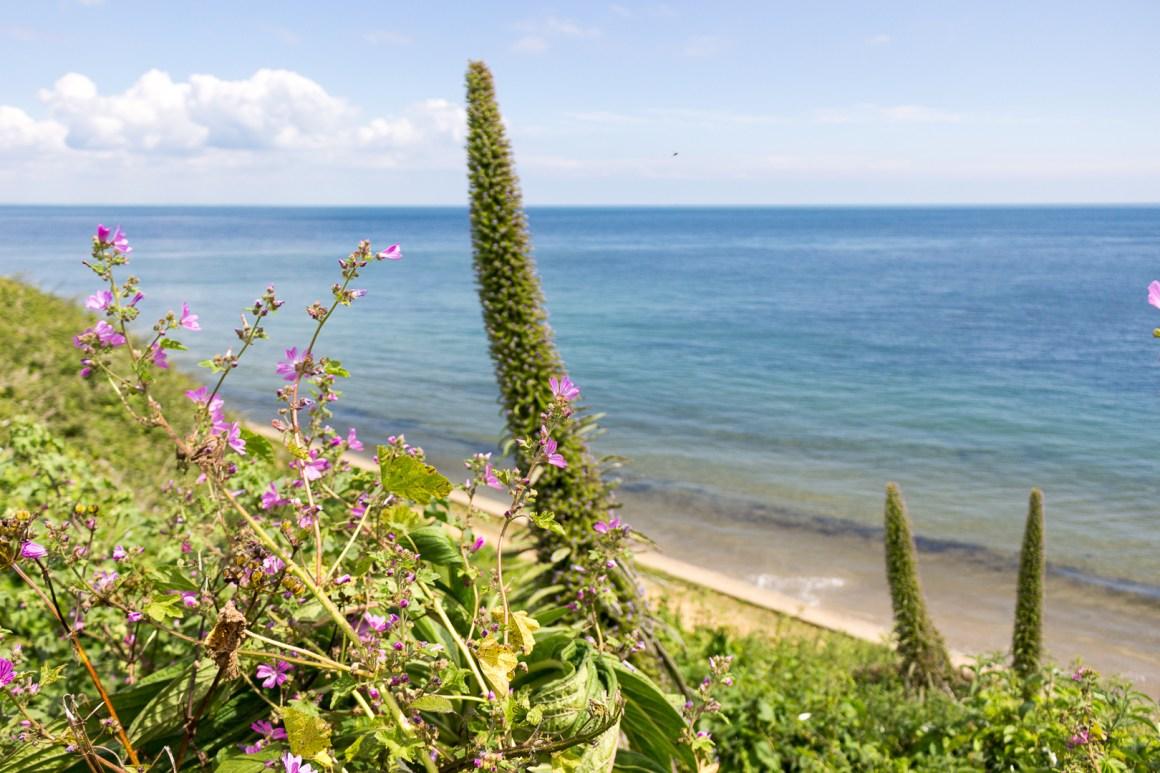 visiter Isle of Wight par Soif de Voyages
