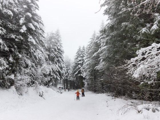Randonnée nordique au col de Picotalen