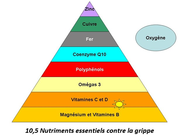 nutritments anti grippe