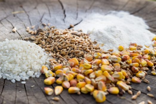 céréales et régime hypotoxique