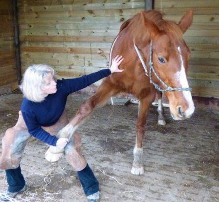 Comment savoir si mon cheval a besoin d'un ostéopathe ?