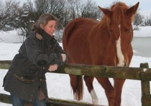 Communication cheval