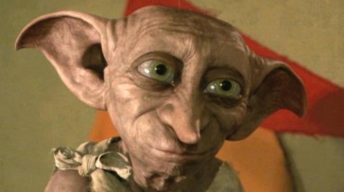 Dobby in leven? Een wezen dat op hem lijkt gefilmd op een ...